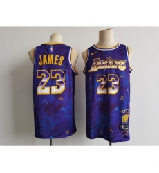 Men's Los Angeles Lakers #23 LeBron James Purple Mvp Rookie Of The Year Select Series Jersey